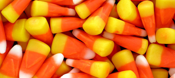can guinea pigs eat candy corn