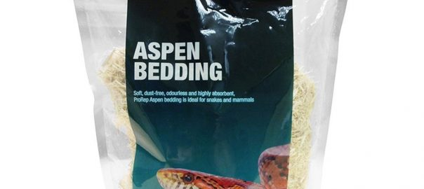 can guinea pigs eat aspen bedding