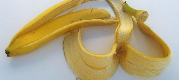 can guinea pigs eat banana skin