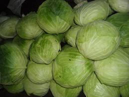 can guinea pigs eat green cabbages
