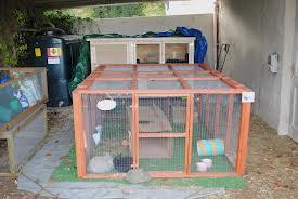 wooden guinea pig run