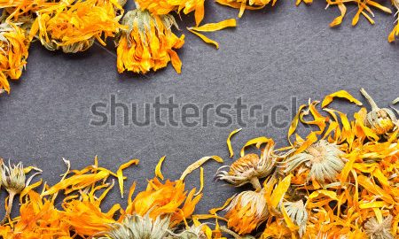 can guinea pigs eat dried marigolds