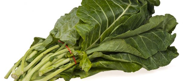 can guinea pigs eat spring greens